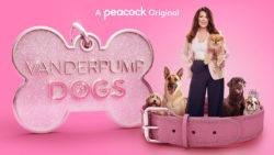 ICYMI: Vanderpump Dogs News