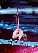 America's Got Talent: The Champions, Sofie Dossi