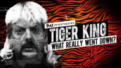 All-New FOX Special TMZ INVESTIGATES: TIGER KING Airs Tonight