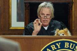 Gary Busey Becomes a Pet Judge