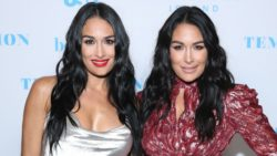 Bella Twins Reveal Baby Names