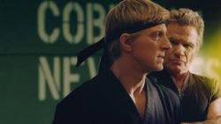 Cobra Kai Season 3 Trailer Revealed