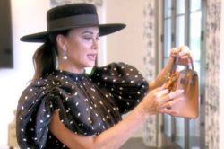 The Real Housewives of Beverly Hills Recap for The Divided States of Erika
